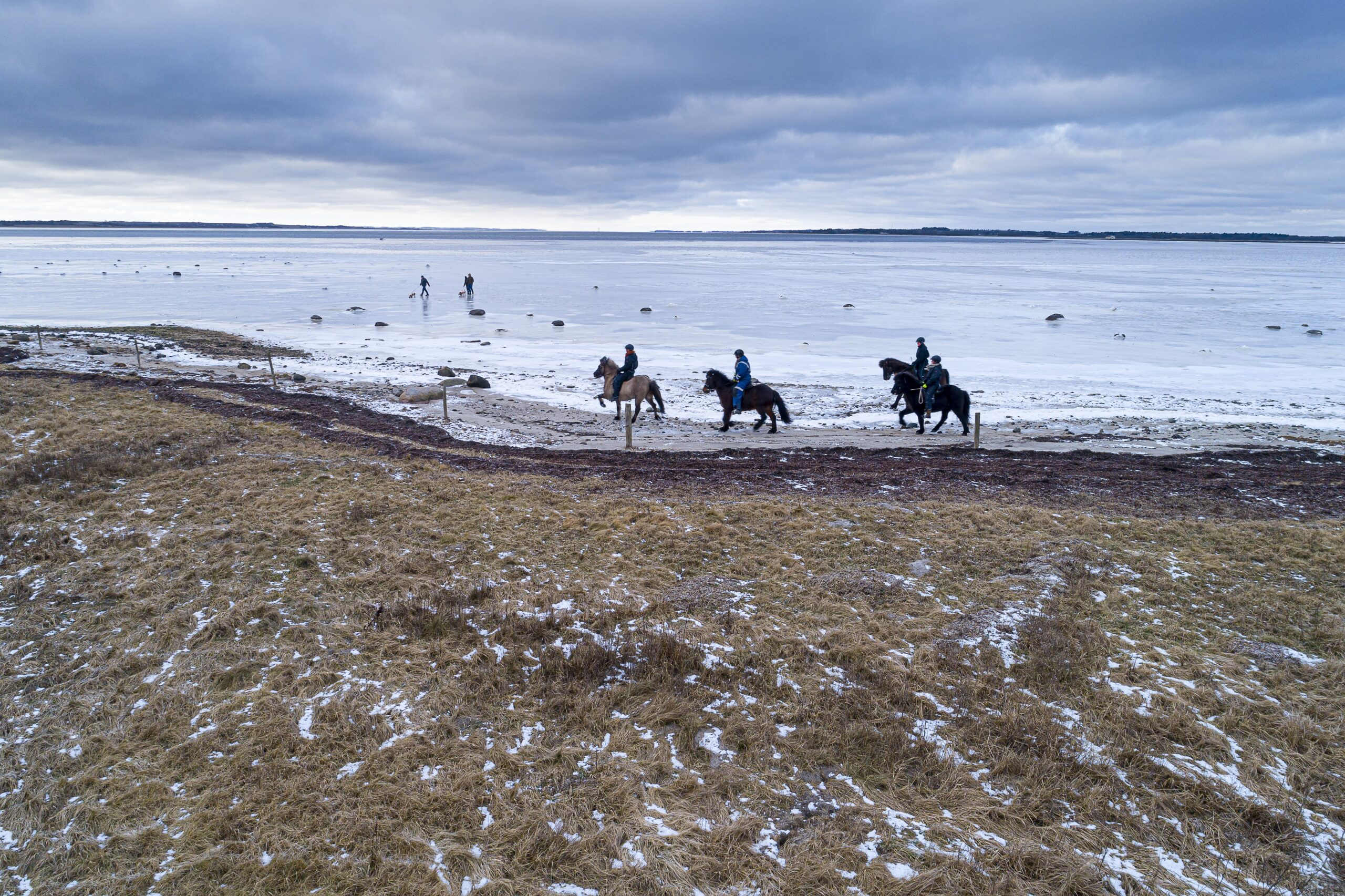Egholm i vinterdragt. Foto: Michael Bo Rasmussen / Baghuset. Dato: 07.02.21